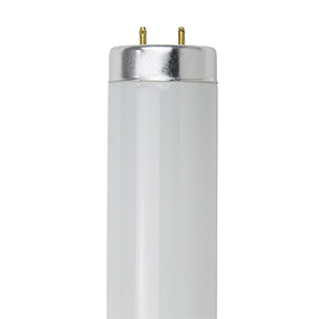 20 WATT DAYLIGHT FLUOR. BULB